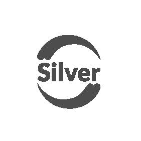 Silver Pinturas