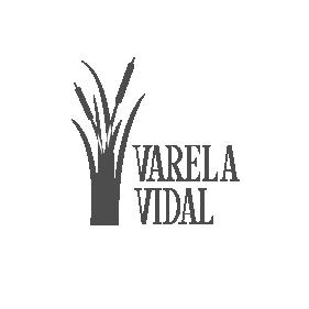 Varela Vidal Paisajismo